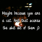 Maybe because you are a cat. And that scares the shit out of them ;D