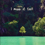 I miss it too!!