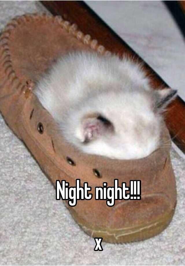 Night night!!!  x