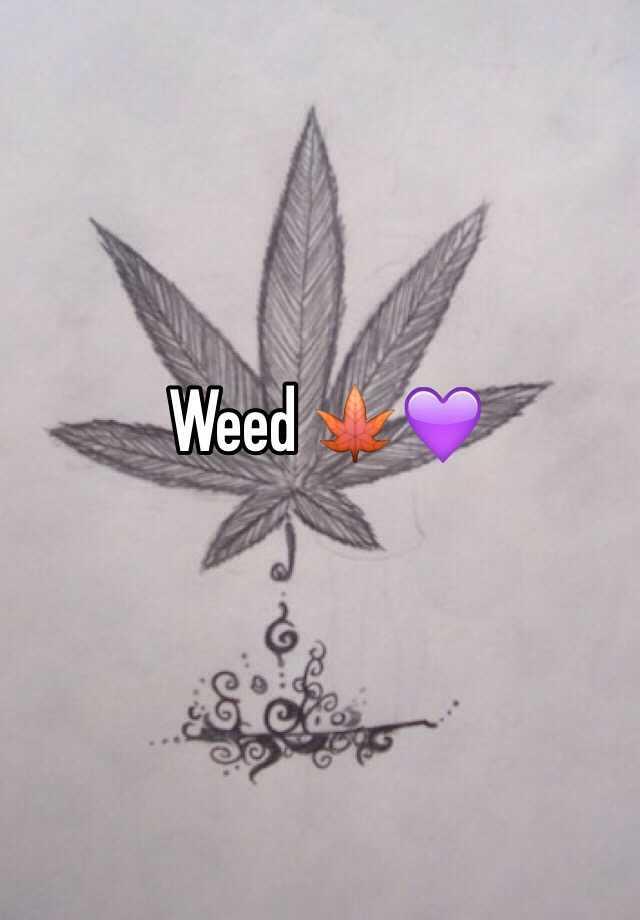 Weed 🍁💜