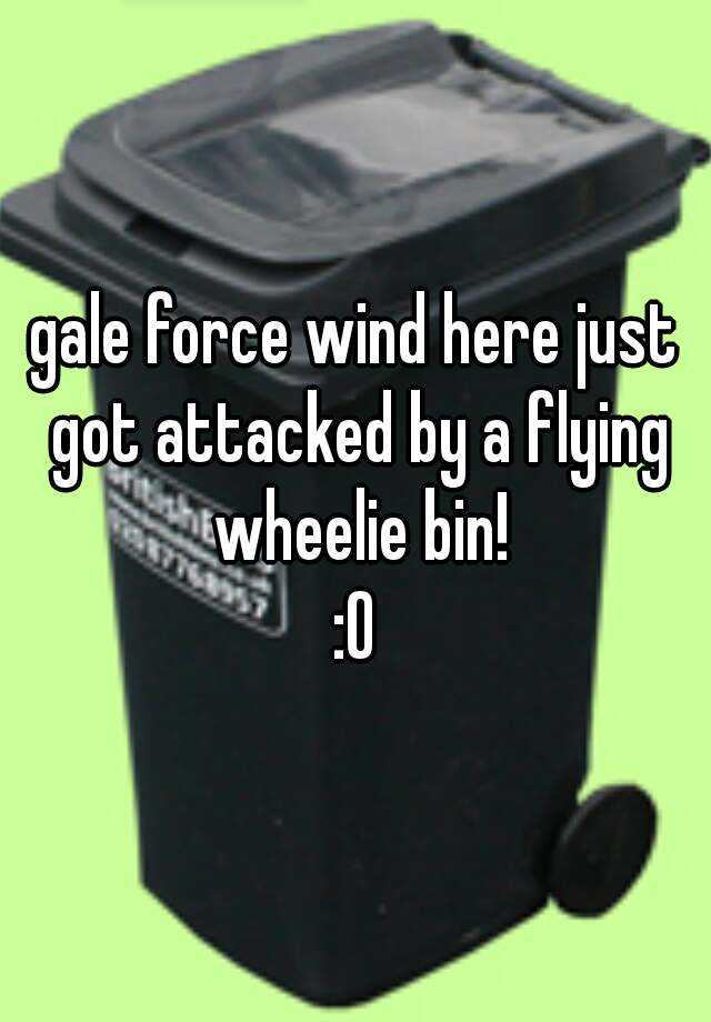 gale force wind here just got attacked by a flying wheelie bin! :O