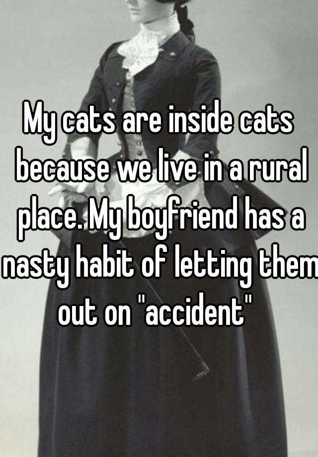 """My cats are inside cats because we live in a rural place. My boyfriend has a nasty habit of letting them out on """"accident"""""""