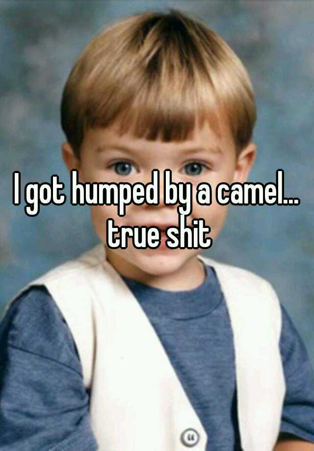 I got humped by a camel... true shit