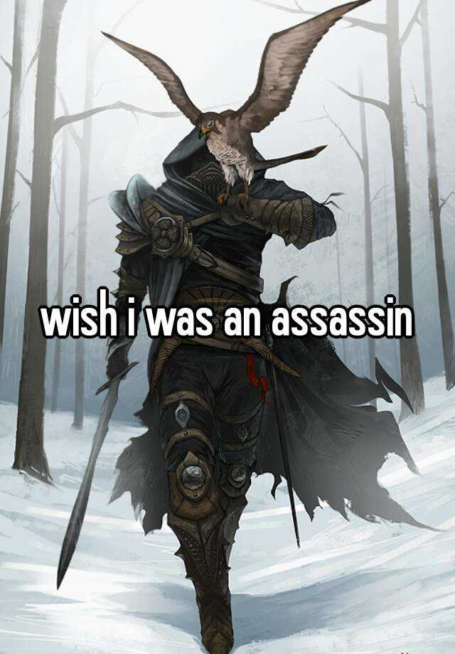 wish i was an assassin